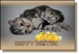 Wish to you all a very Happy Easter
